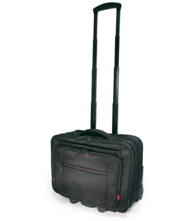 Professional Backpack and Rolling Case Combo -19323
