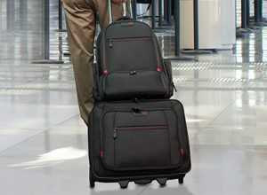 Professional Rolling Case and Backpack